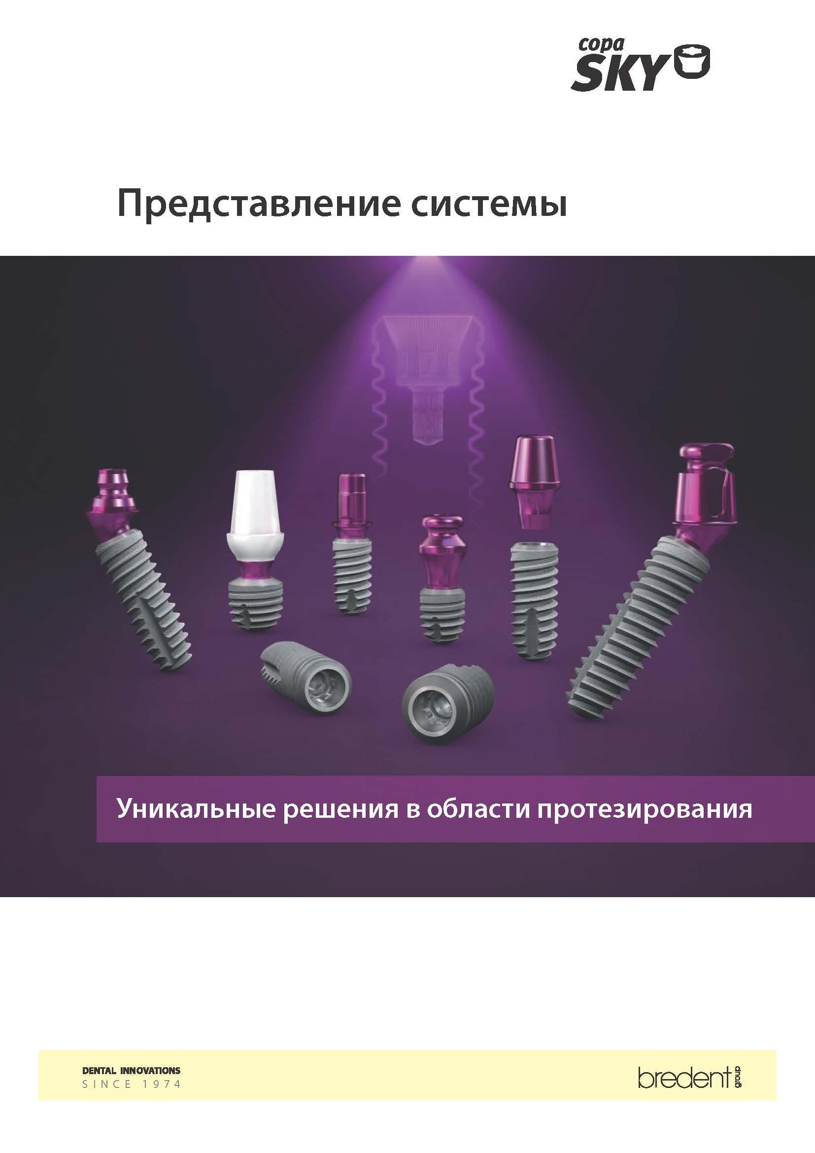 Представление системы copaSKY
